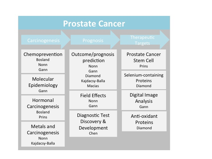 Prostate_Cancer_Diag